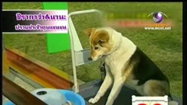 ทีวี แชมป์เปี้ยน - ปราบซ่าส์เจ้าตูบแสนซน 3/4