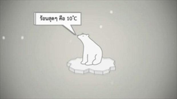 ทำไมหมีขั้วโลกถึงไม่ควรมาอยู่ที่เชียงใหม่?