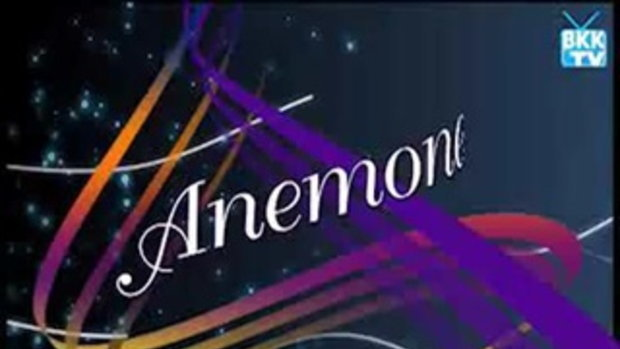 anemone special (09-06-54) 4/5