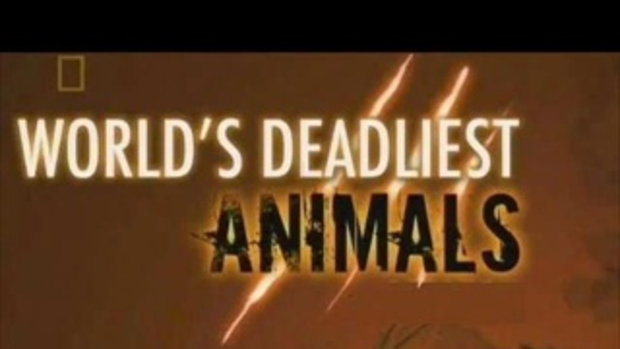 10 อันดับสัตว์อันตรายมากที่สุด