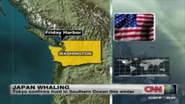 สงครามต้านล่าปลาวาฬที่แลกด้วยชีวิต
