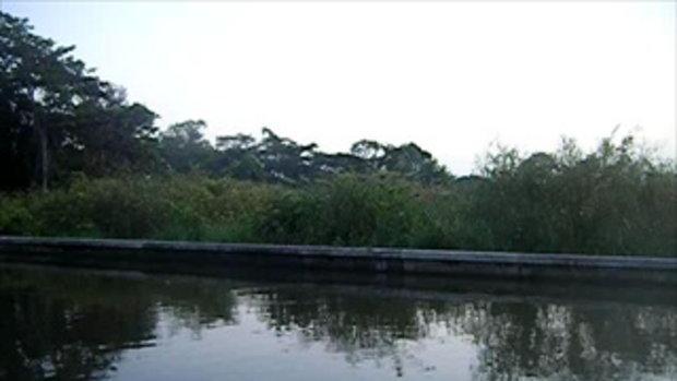 สภาพปริมาณน้ำริมฝั่งแม่้ำน้ำเจ้าพระยาบริเวณปากคลองบางเขนเก่า เช้าวันที่ 1 พฤศจิกายน 2554