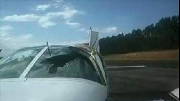 นี่คือความรุนแรงของนกเมื่อบินชนกับเครื่องบิน