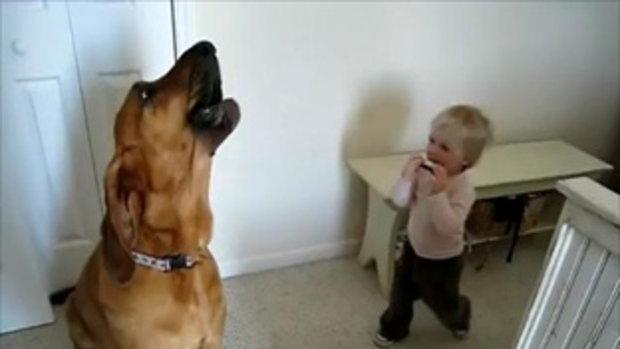 เด็กน้อยเป่า น้องหมาร้อง