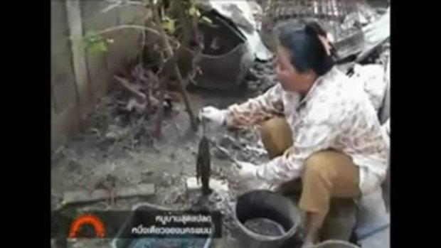 หมู่บ้านอาชีพแปลก เห็นไส้เดือน ปลิง ตุ๊กแกเป็นทองคำ