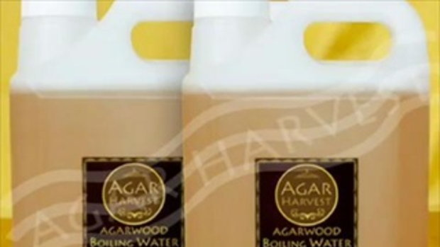 AgarHavest Products available from Agarwood