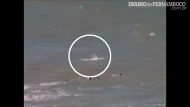 ถูกฉลามกัดในทะเล!! 18+