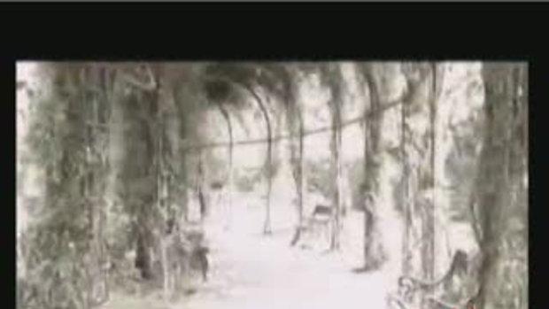 MV เพราะเธอคือลมหายใจ : ปาณิตา & วิงค์
