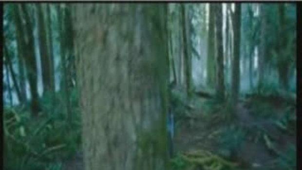 ตัวอย่างภาพยนต์เรื่อง Twilight