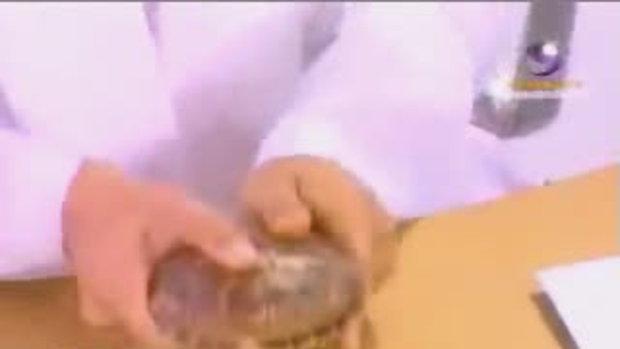 วีไอพี:หมอดูกระดองเต่า(2)ตอน2