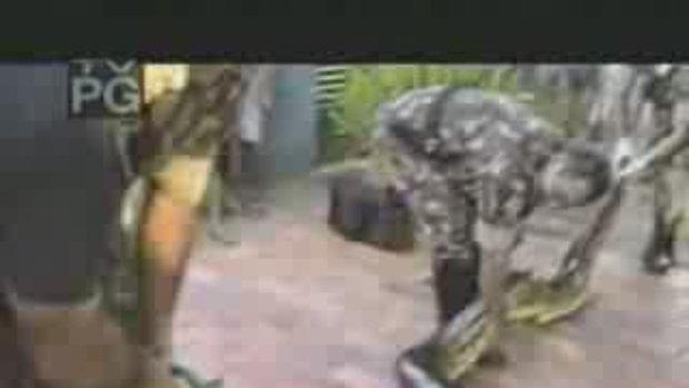 ทหารโดนงูอนาคอนด้ากัดแขน