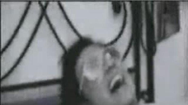 วู้ดดี้เกิดมาคุย : ดัง พันกร (3)