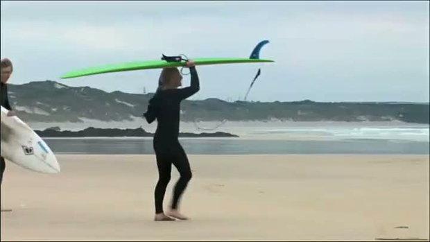 Surfing Sheep น้องแกะ เล่นโต้คลื่น