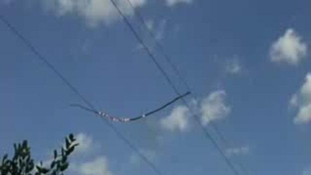 กิ่งไม้หักหล่นลง บน สายไฟฟ้าแรงสูง