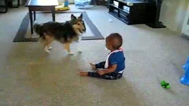 ตลก เด็กน้อยกับเจ้าตูบจอมทะเล้น