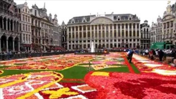 เทศกาลพรมดอกไม้ ประเทศเบลเยี่ยม
