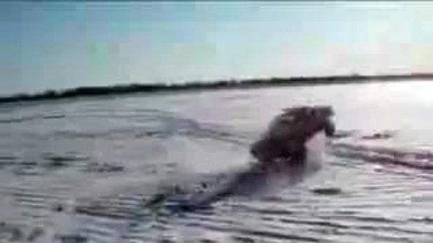 Super Stunt !!