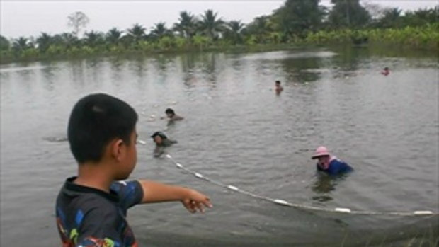 2ลุงสันติเลี้ยงปลาธรรมชาติ