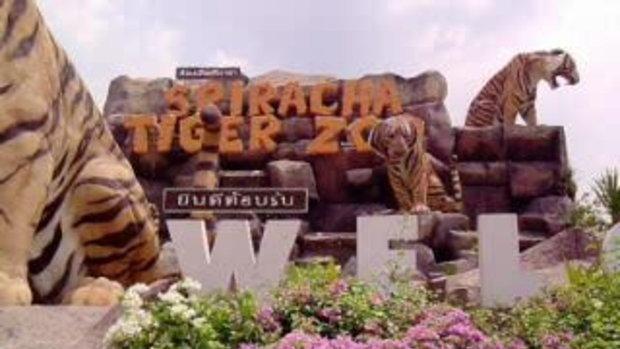 เทื่ยวสวนเสือศรีราชา