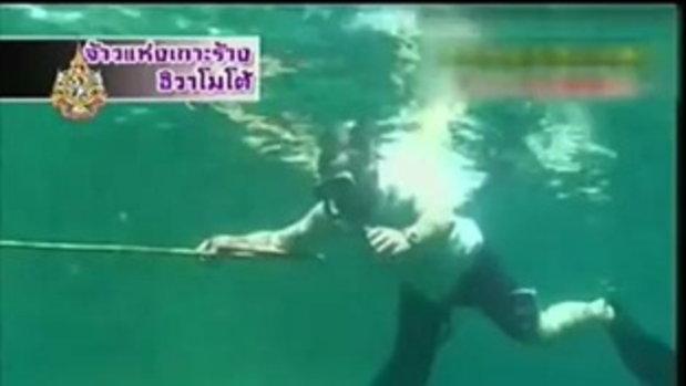 ทีวีแชมเปี้ยนส์ - จ้าวแห่งเกาะร้าง 3/3