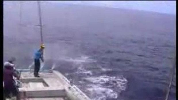 ตะลึง! ตกปลาตัวเป็นล้าน