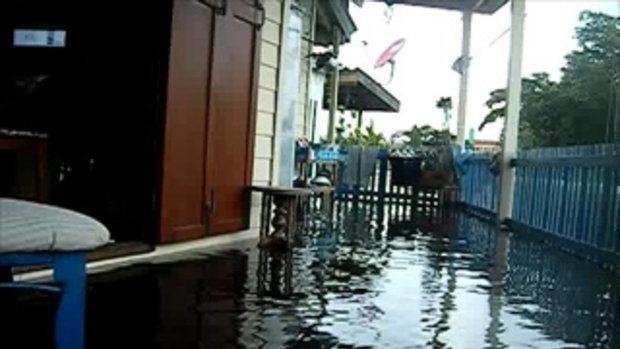 สภาพปริมาณน้ำริมฝั่งแม่้ำน้ำเจ้าพระยาบริเวณปากคลองบางเขนเก่าวันที่25ตุลา2554