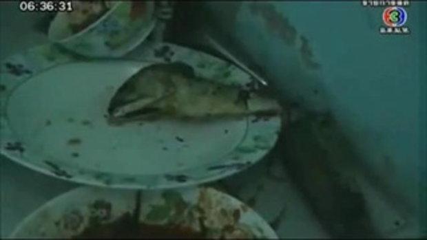 โจรปลาทูทอด