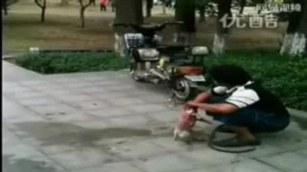 ช็อก!! ชายจีนกินลูกหมาสดๆ ทำใจก่อนดู 18+