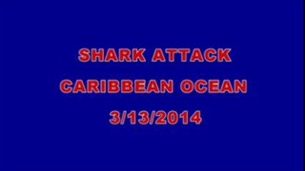 ถูกฉลามโจมตีในทะเล แคริบเบียน