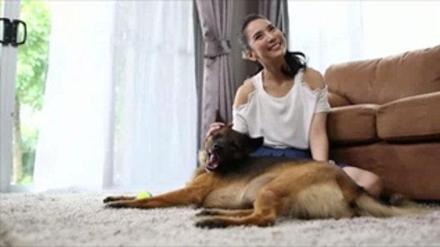 พบเรื่องราวสุดประทับใจของคุณจั๊กจั่นกับน้องหมาประสพโชคสุดน่ารัก