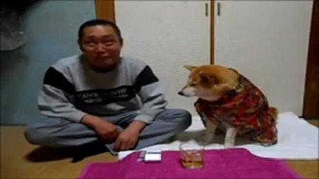 อย่าดื่มเลยนะเราขอ คลิปสุนัขห่วงเจ้าของ