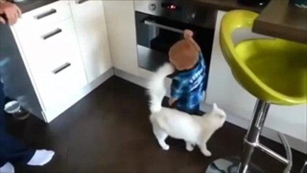 คลิปน่ารักๆ แมวแสนรู้ห้ามเจ้านายตัวน้อยไม่ให้เปิดเตาร้อนๆ