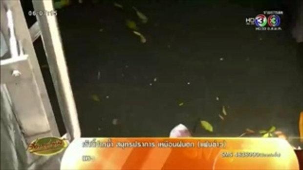 ฝนถล่ม กทม. ต้นไม้ใหญ่-เสาไฟหักโค่น น้ำท่วมขังกระทบการจราจร (15 มิ.ย.58)