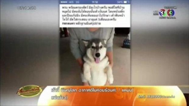 ผู้ใหญ่ดำรับทราบข้อกล่าวหา ยันไม่ได้ฆ่าสุนัขไซบีเรียนแบ่งลูกบ้านกิน(13 ก.ค.58)