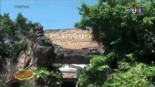 สวนสัตว์เปิดเขาเขียวอวดโฉม ลูกโคอาลา รับวันแม่แห่งชาติ (10 ส.ค.58)