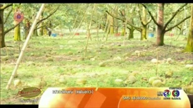 พายุพัดถล่มจันทบุรี ในพื้นที่ 6 อ.ทำสวนผลไม้เสียหายกว่า 500 ไร่ (24 เม.ย.58)