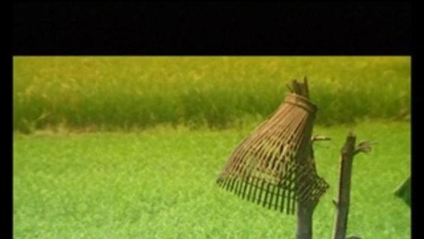 เพลง เวลคัม ทู ทำนา - ไหมไทย ใจตะวัน