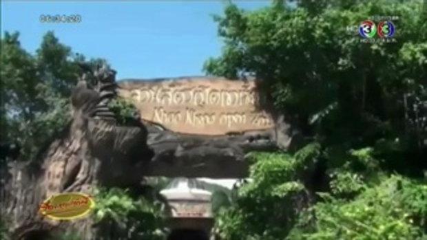 สวนสัตว์เปิดเขาเขียว อวดโฉมสมาชิกใหม่ลูกค่างห้าสี (3 ก.ย.58)