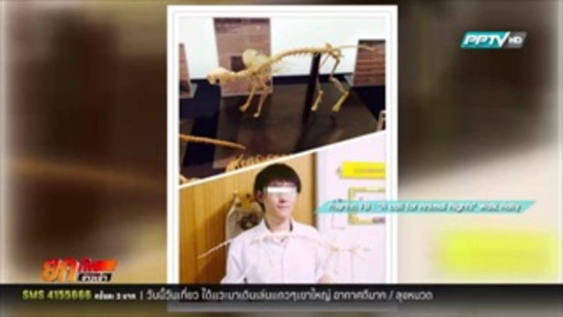 ดราม่าหนัก! แฉภาพสุดโหด นศ.ฆ่าแมวทำงานส่งอาจารย์ 8 กุมภาพันธ์ 2559
