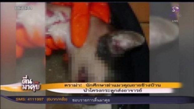 ดราม่า! นักศึกษาฆ่าแมวคุณยายข้างบ้าน นำโครงกระดูกส่งอาจารย์!!