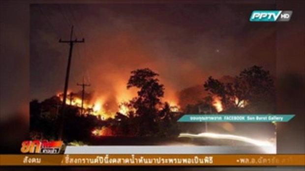 ไฟไหม้ป่า จ.นครนายก วอดกว่า 500 ไร่  3 มีนาคม 2559
