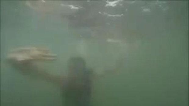 พ่อกับลูกถ่ายวีดีโอกำลังเล่นน้ำอยู่ดีๆ ถ่ายติดไอ้เจ้านี่แว๊บเข้ามาในกล้อง