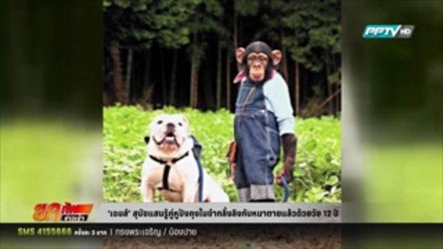 เจมส์ สุนัขแสนรู้ในขำกลิ้งลิงกับหมาตายตามอายุ 80 ปี 15 มีนาคม 2559