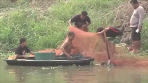 ตะลึง ปลาลอยตัวขึ้นมาบนผิวน้ำคลองรังสิต ชาวบ้านแห่จับเพียบ !!