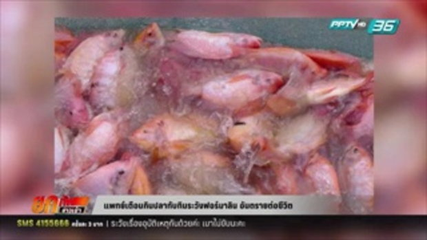 แพทย์เตือนกินปลาทับทิมระวังฟอร์มาลิน อันตรายต่อชีวิต