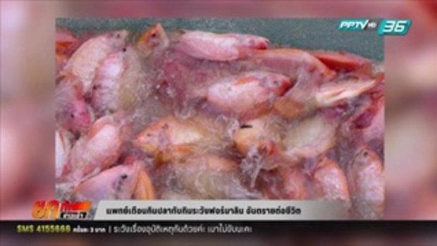 แพทย์เตือนกินปลาทับทิมระวังฟอร์มาลิน อันตรายต่อชีวิต 12 เมษายน 2559