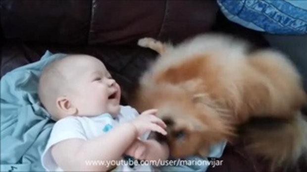 คลิปน่ารัก หนูน้อยน่ารักกับเจ้าสุนัข