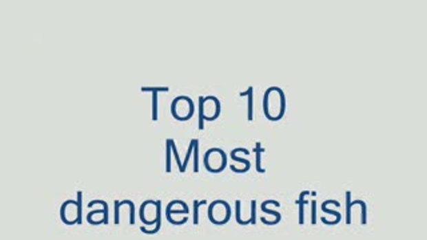 10 อันดับ ปลาหายาก