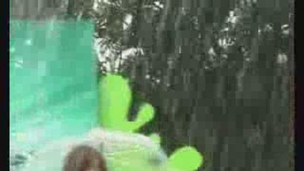 Trident Splash V.3