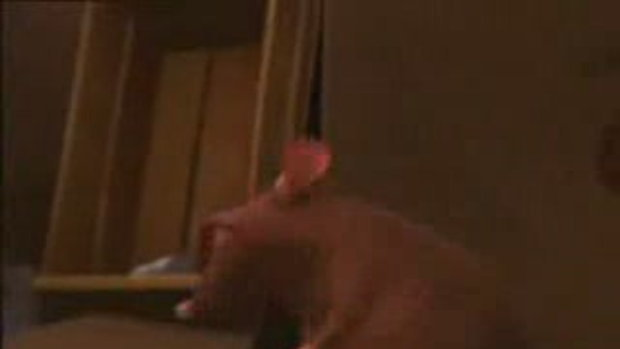 Ratatouille พ่อครัวตัวจิ๊ด 9